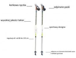 kije-nordic-walking-longi-dynamite1.jpg