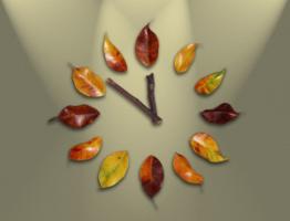 watch-1893395_1280.jpeg