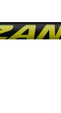 RUNNER GOLD S20 CA04.jpg