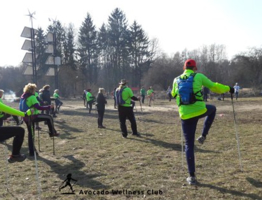 avocado wellness club nordic walking warszawa marta radomska 3.jpg